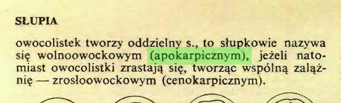 (...) SŁUPIA owocolistek tworzy oddzielny s., to słupkowie nazywa się wolnoowockowym (apokarpicznym), jeżeli natomiast owocolistki zrastają się, tworząc wspólną zalążnię — zrosłoowockowym (cenokarpicznym)...