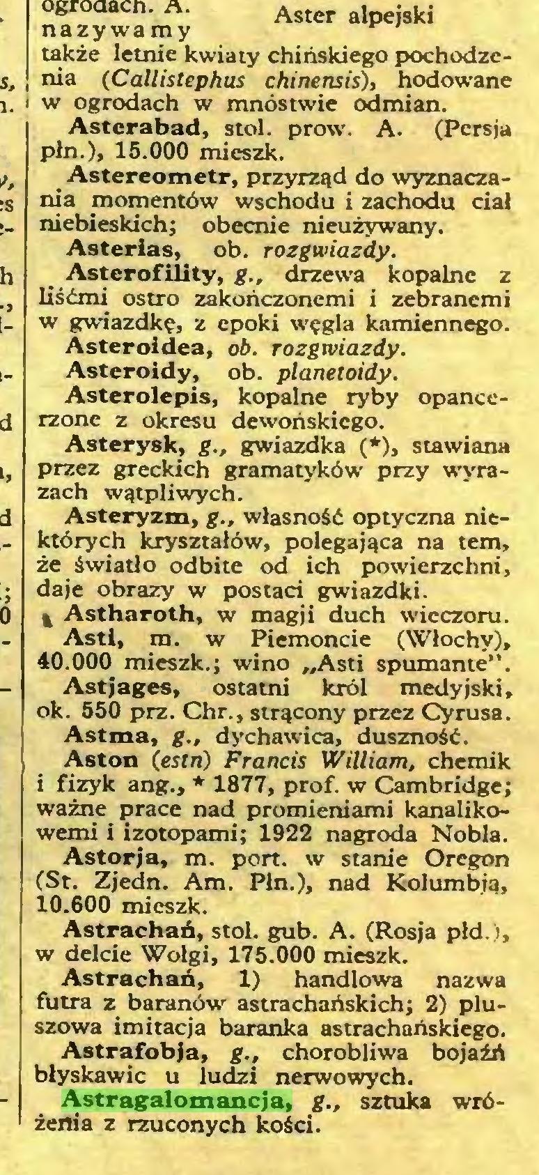 (...) Astragalomancja, g., sztuka wróżenia z rzuconych kości. Aster alpejski...