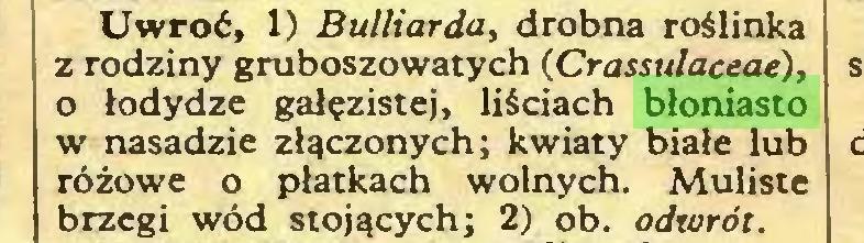 (...) Uwroć, 1) Bulliarda, drobna roślinka z rodziny gruboszowatych (Crassulaceae), o łodydze gałęzistej, liściach błoniasto w nasadzie złączonych; kwiaty białe lub różowe o płatkach wolnych. Muliste brzegi wód stojących; 2) ob. odwrót...