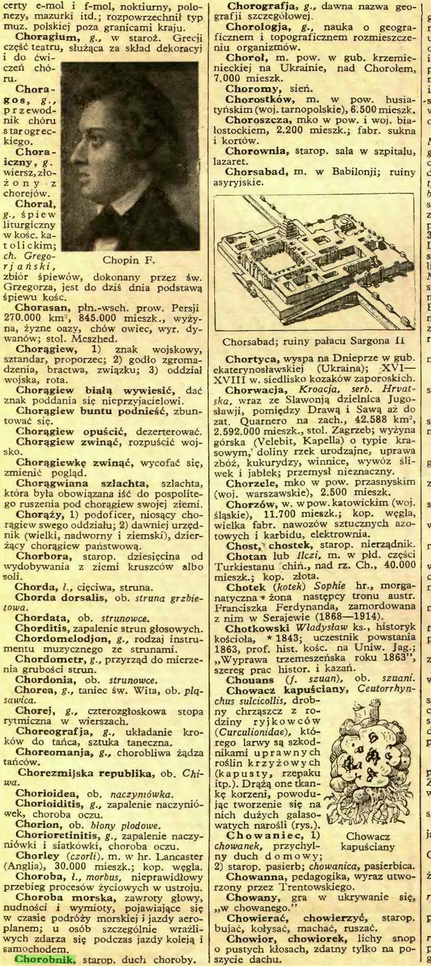 (...) Chorobnik. starop. duch choroby. Chorografja, g., dawna nazwa geografii szczegółowej...