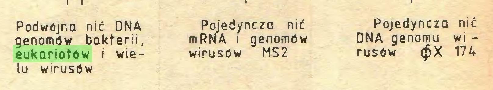 (...) Podwójna nić DNA genomów bakterii, eukariotów i wielu wirusów Pojedyncza nić mRNA i genomów wirusów MS2 Pojedyncza nić DNA genomu wi rusów <£X 174...