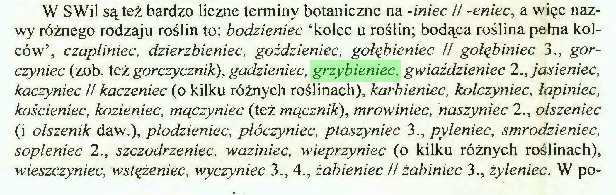 (...) W SWil są też bardzo liczne terminy botaniczne na -iniec U -eniec, a więc nazwy różnego rodzaju roślin to: bodzieniec 'kolec u roślin; bodąca roślina pełna kolców', czapliniec, dzierzbieniec, goździeniec, gołębieniec II gołębiniec 3., gorczyniec (zob. też gorczycznik), gadzieniec, grzybieniec, gwiaździeniec 2., jasieniec, kaczyniec II kaczeniec (o kilku różnych roślinach), karbieniec, kolczyniec, łapiniec, kościeniec, kozieniec, mączyniec (też mącznik), mrowiniec, naszyniec 2., olszeniec (i olszenik daw.), płodzieniec, płóczyniec, ptaszyniec 3., pylenieć, smrodzieniec, sopleniec 2., szczodrżeniec, waziniec, wieprzyniec (o kilku różnych roślinach), wieszczyniec, wstężeniec, wyczyniec 3., 4., żabieniec H żabiniec 3., żyleniec. W po...