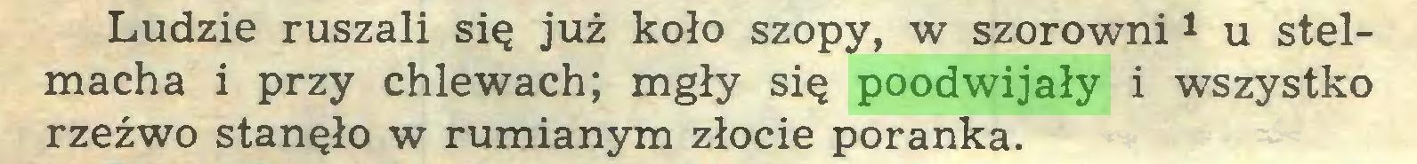 (...) Ludzie ruszali się już koło szopy, w szorowni1 u stelmacha i przy chlewach; mgły się poodwijały i wszystko rzeźwo stanęło w rumianym złocie poranka...