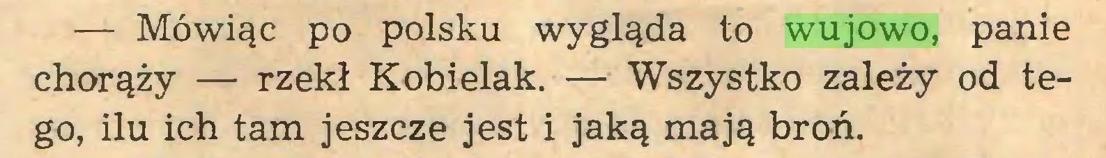 (...) — Mówiąc po polsku wygląda to wujowo, panie chorąży — rzekł Kobielak. — Wszystko zależy od tego, ilu ich tam jeszcze jest i jaką mają broń...