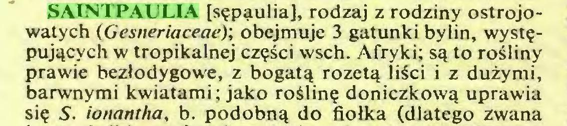 (...) SAINTPAULIA [sępąulia], rodzaj z rodziny ostrojowatych (Gesneriaceae); obejmuje 3 gatunki bylin, występujących w tropikalnej części wsch. Afryki; są to rośliny prawie bezłodygowe, z bogatą rozetą liści i z dużymi, barwnymi kwiatami; jako roślinę doniczkową uprawia się S. ionanrha, b. podobną do fiołka (dlatego zwana...