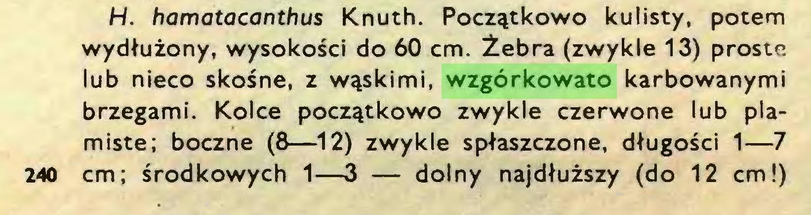 (...) H. hamatacanthus Knuth. Początkowo kulisty, potem wydłużony, wysokości do 60 cm. Żebra (zwykle 13) proste lub nieco skośne, z wąskimi, wzgórkowato karbowanymi brzegami. Kolce początkowo zwykle czerwone lub plamiste; boczne (8—12) zwykle spłaszczone, długości 1—7 240 cm; środkowych 1—3 — dolny najdłuższy (do 12 cm!)...