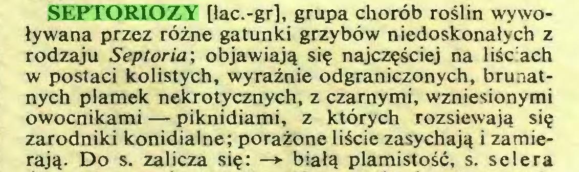 (...) SEPTORIOZY [łac.-gr], grupa chorób roślin wywoływana przez różne gatunki grzybów niedoskonałych z rodzaju Septoria; objawiają się najczęściej na liściach w postaci kolistych, wyraźnie odgraniczonych, brunatnych plamek nekrotycznych, z czarnymi, wzniesionymi owocnikami — piknidiami, z których rozsiewają się zarodniki konidialne; porażone liście zasychają i zamierają. Do s. zalicza się: —> białą plamistość, s. selera...