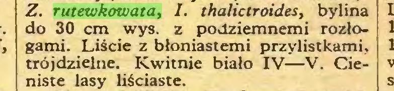 (...) Z. rutewkowata, I. thalictroides, bylina do 30 cm wys. z podziemnemi rozłogami. Liście z błoniastemi przylistkami, trójdzielne. Kwitnie biało IV—V. Cieniste lasy liściaste...