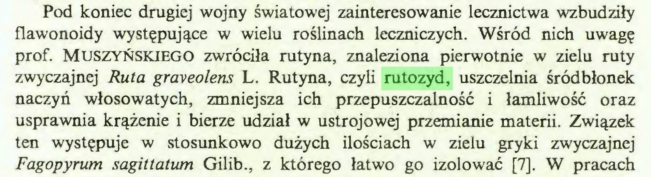 (...) Pod koniec drugiej wojny światowej zainteresowanie lecznictwa wzbudziły flawonoidy występujące w wielu roślinach leczniczych. Wśród nich uwagę prof. Muszyńskiego zwróciła rutyna, znaleziona pierwotnie w zielu ruty zwyczajnej Ruta graveolens L. Rutyna, czyli rutozyd, uszczelnia śródbłonek naczyń włosowatych, zmniejsza ich przepuszczalność i łamliwość oraz usprawnia krążenie i bierze udział w ustrojowej przemianie materii. Związek ten występuje w stosunkowo dużych ilościach w zielu gryki zwyczajnej Fagopyrum sagittatum Gilib., z którego łatwo go izolować [7]. W pracach...
