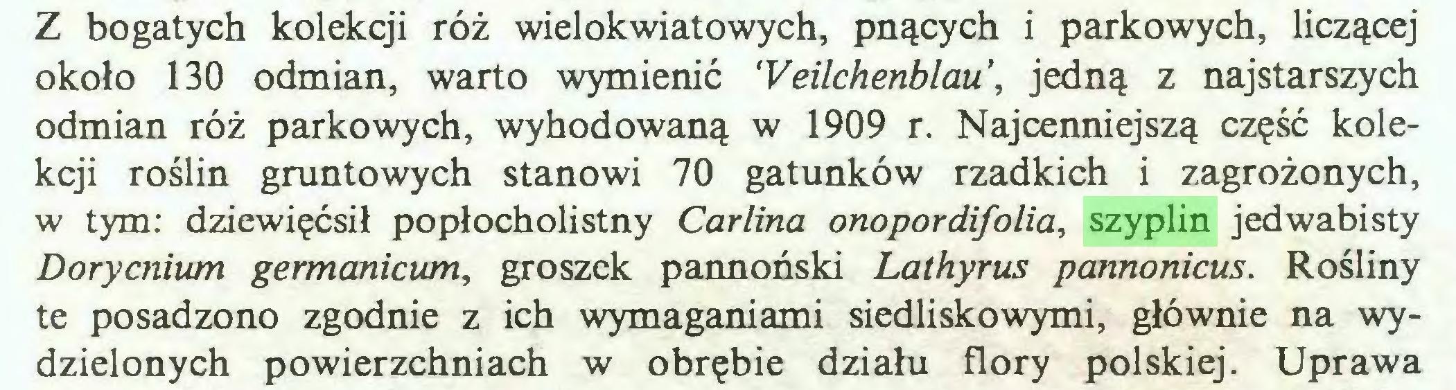 (...) Z bogatych kolekcji róż wielokwiatowych, pnących i parkowych, liczącej około 130 odmian, warto wymienić 'Veilchenblau, jedną z najstarszych odmian róż parkowych, wyhodowaną w 1909 r. Najcenniejszą część kolekcji roślin gruntowych stanowi 70 gatunków rzadkich i zagrożonych, w tym: dziewięćsił popłocholistny Carlina onopordifolia, szyplin jedwabisty Dorycnium germanicum, groszek pannoński Lathyrus pannonicus. Rośliny te posadzono zgodnie z ich wymaganiami siedliskowymi, głównie na wydzielonych powierzchniach w obrębie działu flory polskiej. Uprawa...