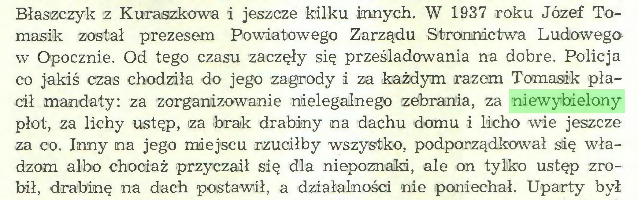 (...) Błaszczyk z Kuraszkowa i jeszcze kilku innych. W 1937 roku Józef Tomasik został prezesem Powiatowego Zarządu Stronnictwa Ludowegow Opocznie. Od tego czasu zaczęły się prześladowania na dobre. Policja co jakiś czas chodziła do jego zagrody i za każdym razem Tomasik płacił mandaty: za zorganizowanie nielegalnego zebrania, za niewybielony płot, za lichy ustęp, za brak drabiny na dachu domu i licho wie jeszcze za co. Inny na jego miejscu rzuciłby wszystko, podporządkował się władzom albo chociaż przyczaił się dla niepoznaki, ale on tylko ustęp zrobił, drabinę na dach postawił, a działalności nie poniechał. Uparty był...