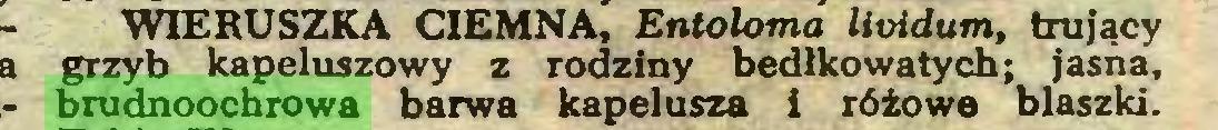 (...) WIERUSZKA CIEMNA, Entoloma lioidum, trujący grzyb kapeluszowy z rodziny bedłkowatych; jasna, brudnoochrowa barwa kapelusza i różowe blaszki...