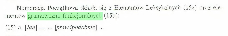 (...) Numeracja Początkowa składa się z Elementów Leksykalnych (15a) oraz elementów gramatyczno-funkcjonalnych (15b): (15) a. [Jan] ..., ... [prawdpodobnie] ...