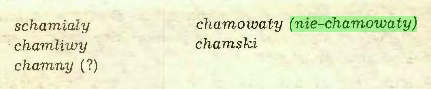 (...) schamialy chamowaty (nie-chamowaty) chamliwy chamski chamny (?)...
