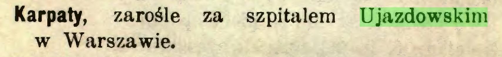 (...) Karpaty, zarośle za szpitalem Ujazdowskim w Warszawie...
