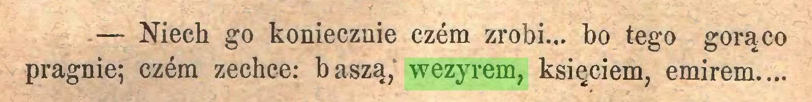 (...) — Niech go koniecznie czem zrobi... bo tego gorąco pragnie; czem zechce: baszą, wezyrem, księciem, emirem...