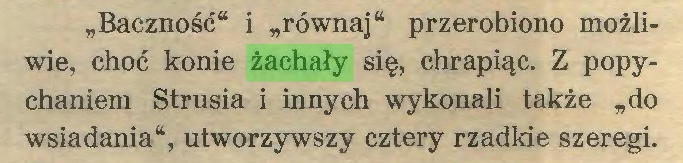 """(...) """"Baczność"""" i """"równaj"""" przerobiono możliwie, choć konie żachały się, chrapiąc. Z popychaniem Strusia i innych wykonali także """"do wsiadania"""", utworzywszy cztery rzadkie szeregi..."""