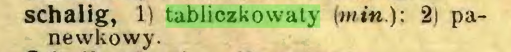 (...) schalig, 1) tabliczkowaty (min): 2) panewkowy...