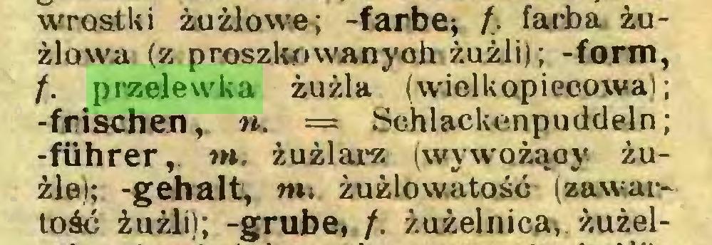 (...) wrostki żużlowe; -farbę; fi. farba żużlowa: (z proszkowanych żużli); -form, /. przelewka żużla (wielkopiecowa); -frischen, n. = Schlackenpuddeln; -führer,. m. żużlarz (wywożąoy żużle); -gehalt, nu żużlowatość (zawartość żużli); -grube, /. żużelnica; żużel...