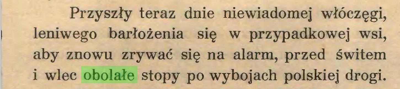 (...) Przyszły teraz dnie niewiadomej włóczęgi, | leniwego barłożenia się w przypadkowej wsi, aby znowu zrywać się na alarm, przed świtem i wlec obolałe stopy po wybojach polskiej drogi...