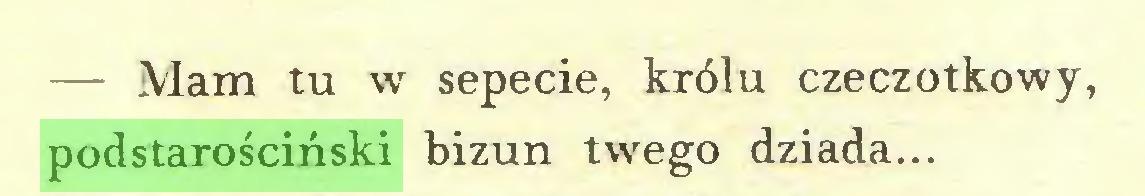 (...) — Mam tu w sepecie, królu czeczotkowy, podstarościński bizun twrego dziada...