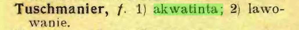(...) Tuschmanier, /. 1) akwatinta; 2) lawowanie...