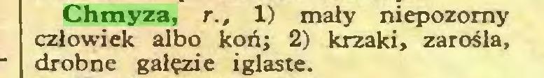 (...) Chmyza, r., 1) mały niepozorny człowiek albo koń; 2) krzaki, zarośla, drobne gałęzie iglaste...