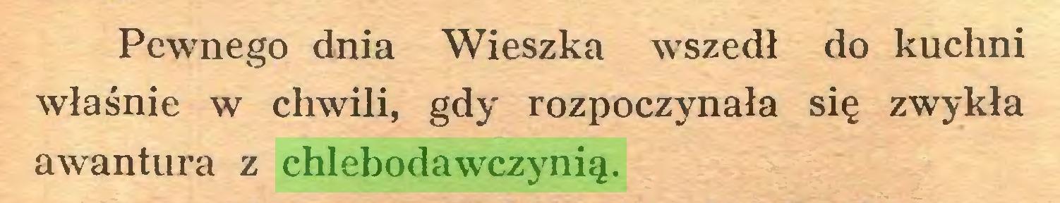 (...) Pewnego dnia Wieszka wszedł do kuchni właśnie w chwili, gdy rozpoczynała się zwykła awantura z chlebodawczynią...