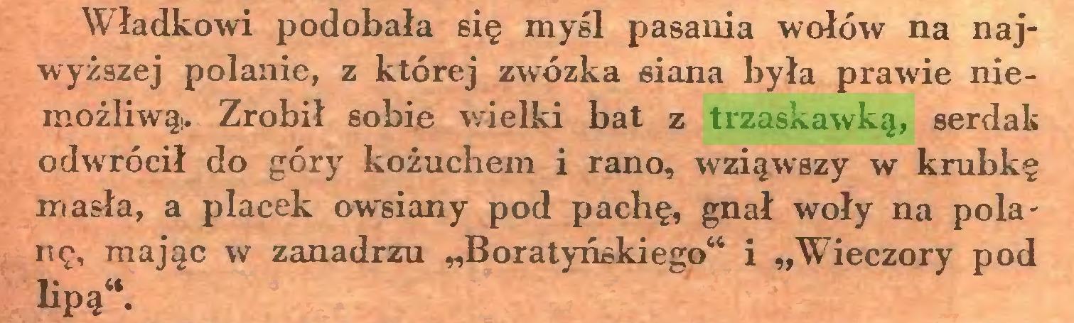 """(...) Władkowi podobała się myśl pasania wołów na najwyższej polanie, z której zwózka siana była prawie niemożliwą,. Zrobił sobie wielki bat z trzaskawką, serdak odwrócił do góry kożuchem i rano, wziąwszy w krubkę masła, a placek owsiany pod pachę, gnał woły na polanę, mając w zanadrzu """"Boratyńskiego"""" i """"Wieczory pod lipą""""..."""