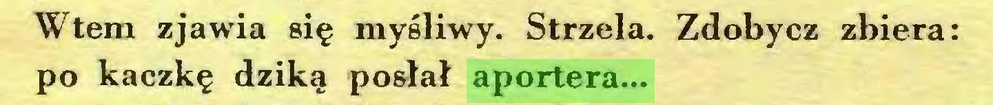 (...) Wtem zjawia się myśliwy. Strzela. Zdobycz zbiera: po kaczkę dziką posłał aportera...