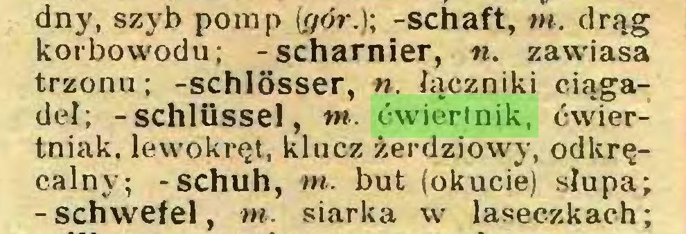 (...) dny, szyb pomp (i/ór.); -schaft, w. drąg korbowodu; -Scharnier, n. zawiasa trzonu; -Schlösser, n. łączniki ciągadeł; -Schlüssel, m. ćwiertnik, ćwiertniak. lewókręt, klucz żerdziowy, odkręcalny; -schuh, m. but (okucie) słupa; -Schwefel, m. siarka w laseczkach;...