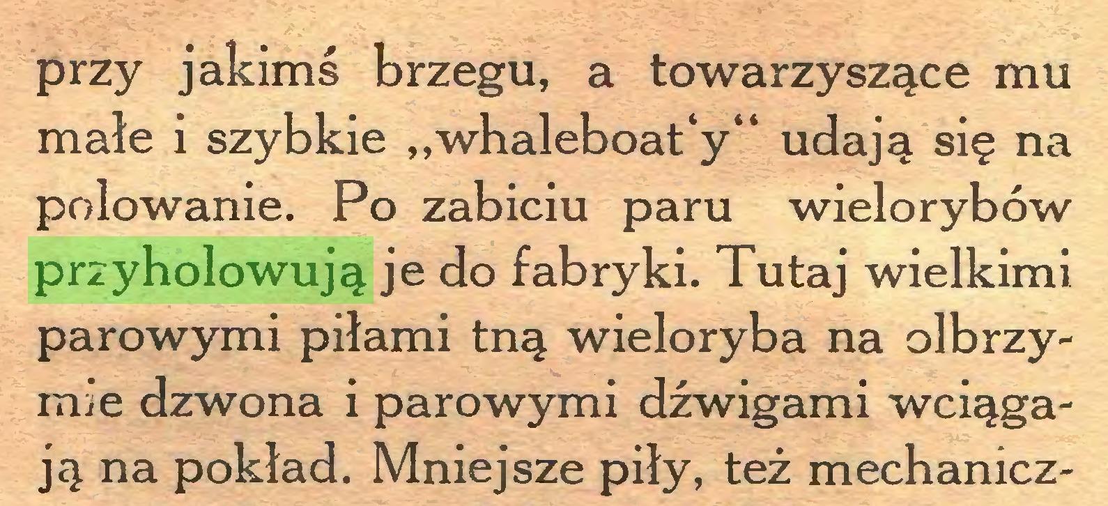 """(...) przy jakimś brzegu, a towarzyszące mu małe i szybkie """"whaleboat'y' udają się na polowanie. Po zabiciu paru wielorybów przyholowują je do fabryki. Tutaj wielkimi parowymi piłami tną wieloryba na olbrzymie dzwona i parowymi dźwigami wciągają na pokład. Mniejsze piły, też mechanicz..."""