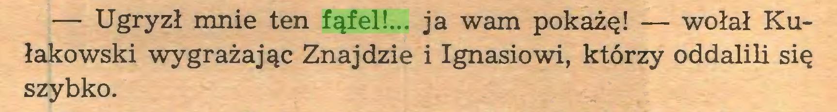 (...) — Ugryzł mnie ten fąfel!... ja wam pokażę! — wołał Kułakowski wygrażając Znajdzie i Ignasiowi, którzy oddalili się szybko...