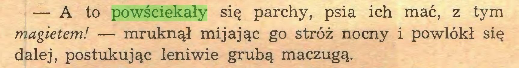 (...) — A to powściekały się parchy, psia ich mać, z tym magietem! — mruknął mijając go stróż nocny i powlókł się dalej, postukując leniwie grubą maczugą...