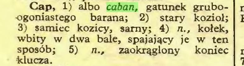 (...) Cap, 1) albo caban, gatunek grubo•ogoniastego barana; 2) stary kozioł; 3) samiec kozicy, samy; 4) n., kołek, wbity w dwa bale, spajający je w ten sposób; 5) n., zaokrąglony koniec ■klucza...