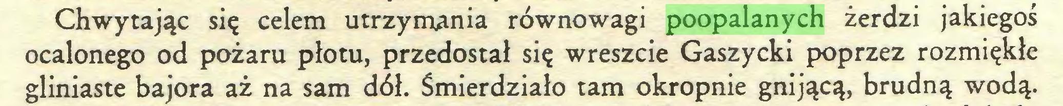 (...) Chwytając się celem utrzymania równowagi poopalanych żerdzi jakiegoś ocalonego od pożaru płotu, przedostał się wreszcie Gaszycki poprzez rozmiękłe gliniaste bajora aż na sam dół. Śmierdziało tam okropnie gnijącą, brudną wodą...