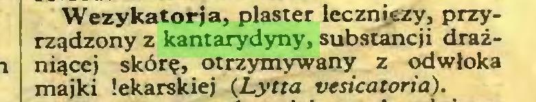 (...) Wezykatorja, plaster leczniczy, przyrządzony z kantarydyny, substancji drażniącej skórę, otrzymywany z odwłoka majki lekarskiej (Lytta vesicatoria)...