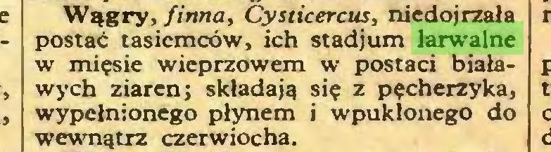 (...) Wągry, finna, Cysticercus, niedojrzała postać tasiemców, ich stadjum larwalne w mięsie wieprzowem w postaci białawych ziaren; składają się z pęcherzyka, wypełnionego płynem i wpukłonego do wewnątrz czerwiocha...