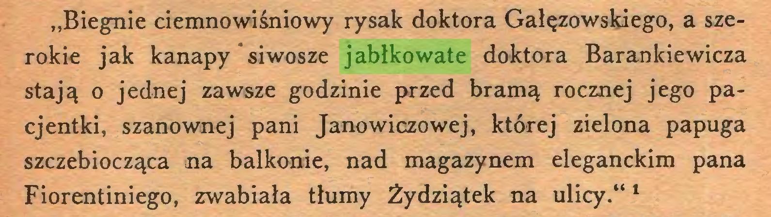 """(...) """"Biegnie ciemnowiśniowy rysak doktora Gałęzowskiego, a szerokie jak kanapy siwosze jabłkowate doktora Barankiewicza stają o jednej zawsze godzinie przed bramą rocznej jego pacjentki, szanownej pani Janowiczowej, której zielona papuga szczebiocząca na balkonie, nad magazynem eleganckim pana Fiorentiniego, zwabiała tłumy Żydziątek na ulicy.""""1..."""