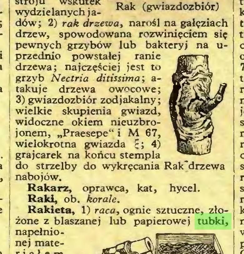 (...) Rakieta, 1) raca, ognie sztuczne, złożone z blaszanej lub papierowej tubki, napełnio- Rak (gwiazdozbiór)...