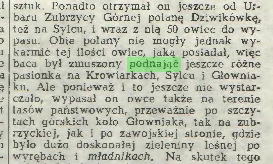 (...) sztuk. Ponadto otrzymał on jeszcze od Urbaru Zubrzycy Górnej polanę Dziwikówkę, też na Sylcu, i wraz z nią 50 owiec do wypasu. Obie polany nie mogły jednak wykarmić tej ilości owiec, jaką posiadał, więc baca był zmuszony podnająć jeszcze różne pasionka na Krowiarkach, Sylcu i Głowniaku. Ale ponieważ i to jeszcze nie wystarczało, wypasał on owce także na terenie lasów państwowych, przeważnie po szczytach górskich koło Głowniaka, tak na Zubrzyckiej, jak i po zawojskiej stronie, gdzie było dużo doskonałej zieleniny leśnej po wyrębach i mładnikach. Na skutek tego...