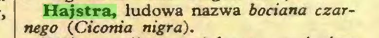 (...) Hajstra, ludowa nazwa bociana czarnego (Ciconia nigra)...