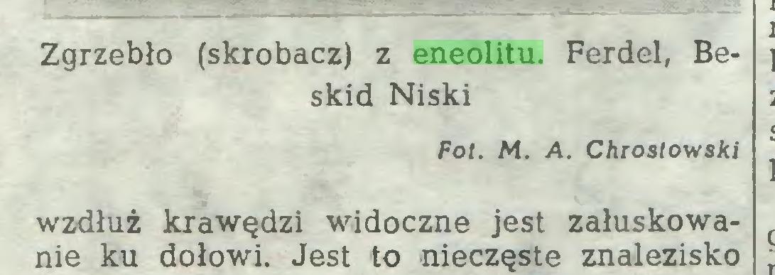 (...) Zgrzebło (skrobacz) z eneolitu. Ferdel, Beskid Niski Fot. M. A. Chrostowski wzdłuż krawędzi widoczne jest załuskowanie ku dołowi. Jest to nieczęste znalezisko...
