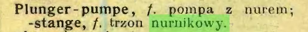 (...) Plunger-pumpe, f. pompa z nurem; -stange, /. trzon nurnikowy...