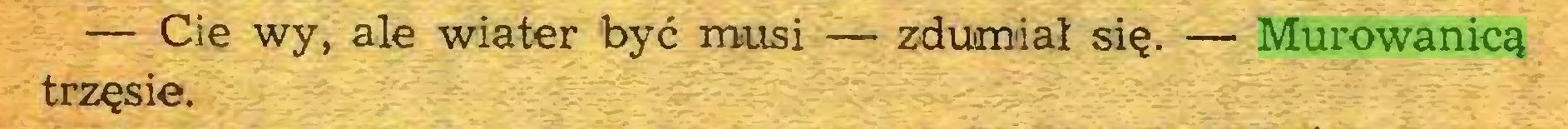 (...) — Cie wy, ale wiater być musi — zdumiał się. — Murowanicą trzęsie...