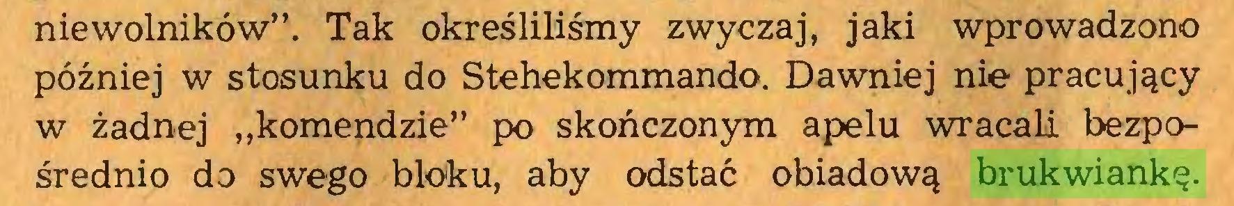"""(...) niewolników"""". Tak określiliśmy zwyczaj, jaki wprowadzono później w stosunku do Stehekommando. Dawniej nie pracujący w żadnej """"komendzie"""" po skończonym apelu wracali bezpośrednio do swego bloku, aby odstać obiadową brukwiankę..."""