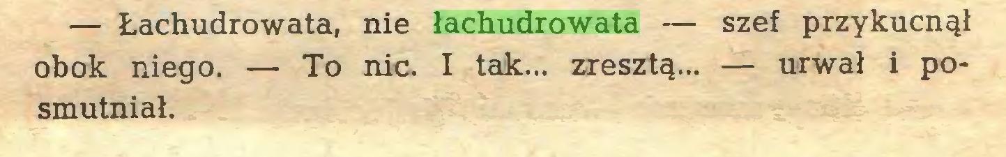 (...) — Łachudrowata, nie łachudrowata — szef przykucnął obok niego. — To nic. I tak... zresztą... — urwał i posmutniał...