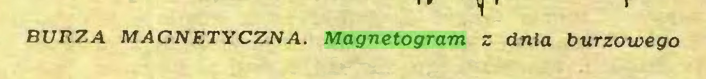 (...) BURZA MAGNETYCZNA. Magnetogram z dnia burzowego...