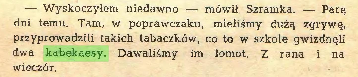 (...) — Wyskoczyłem niedawno — mówił Szramka. — Parę dni temu. Tam, w poprawczaku, mieliśmy dużą zgrywę, przyprowadzili takich tabaczków, co to w szkole gwizdnęli dwa kabekaesy. Dawaliśmy im łomot. Z rana i na wieczór...