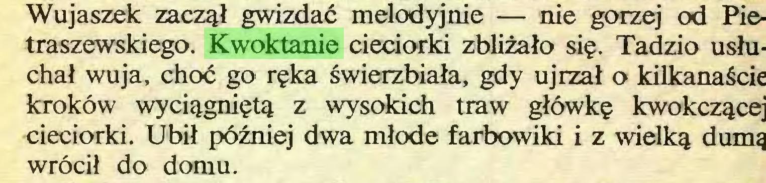 (...) Wujaszek zaczął gwizdać melodyjnie — nie gorzej od Pietraszewskiego. Kwoktanie cieciorki zbliżało się. Tadzio usłuchał wuja, choć go ręka świerzbiała, gdy ujrzał o kilkanaście kroków wyciągniętą z wysokich traw główkę kwokczącej cieciorki. Ubił później dwa młode farbowiki i z wielką dumą wrócił do domu...